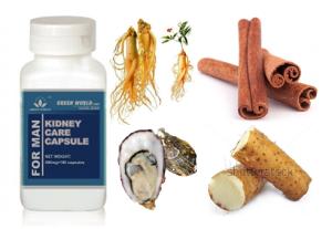 obat herbal ginjal bocor